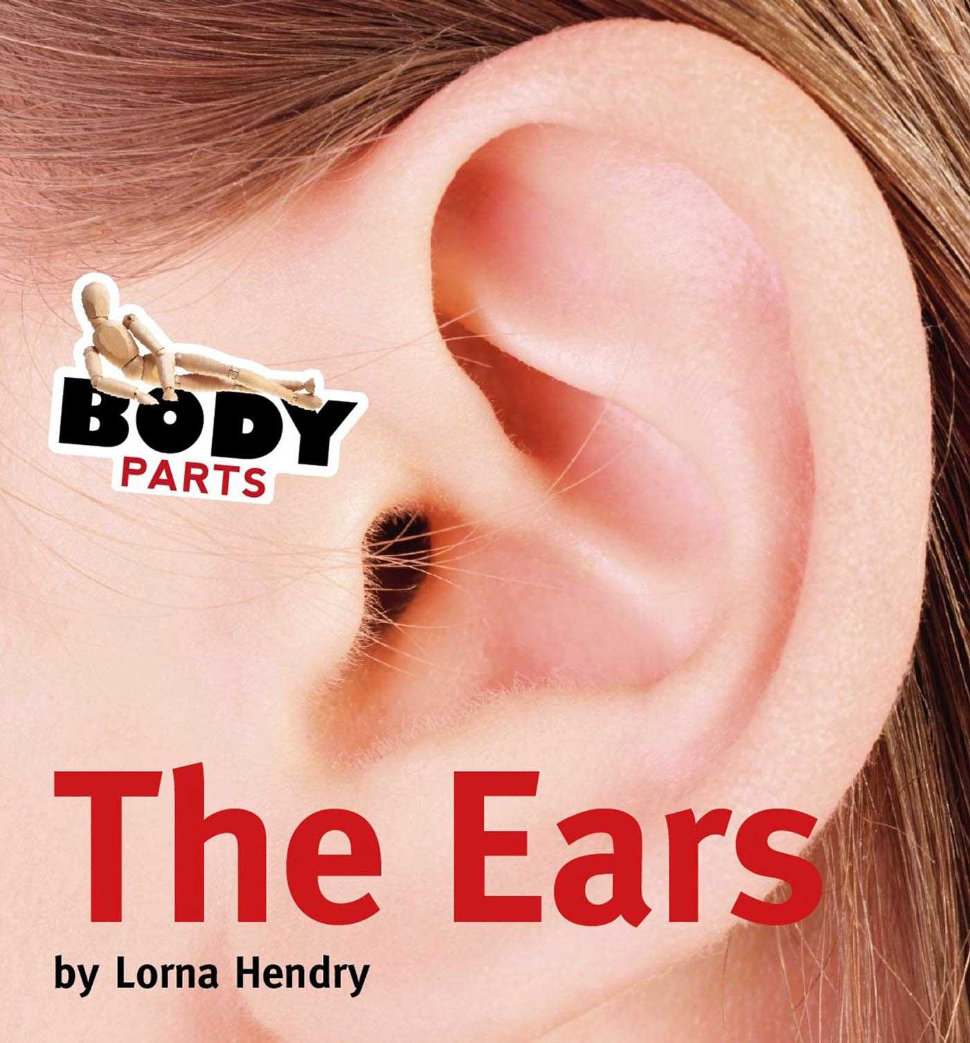 Body Parts :The Ears