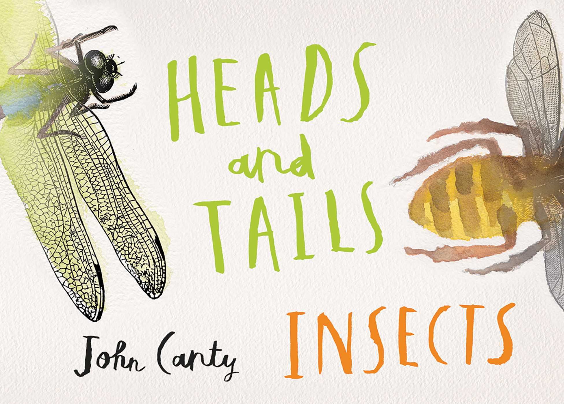 Picture of Heads and Tails: Insects