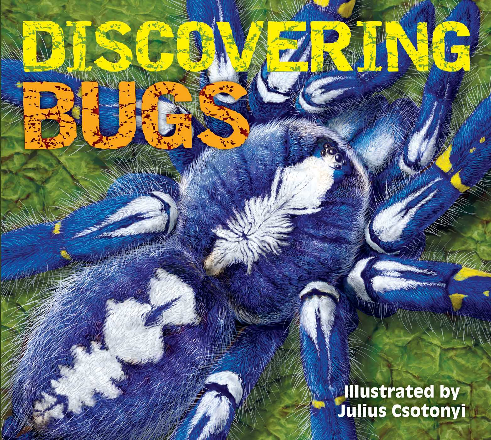 Picture of Discovering Bugs