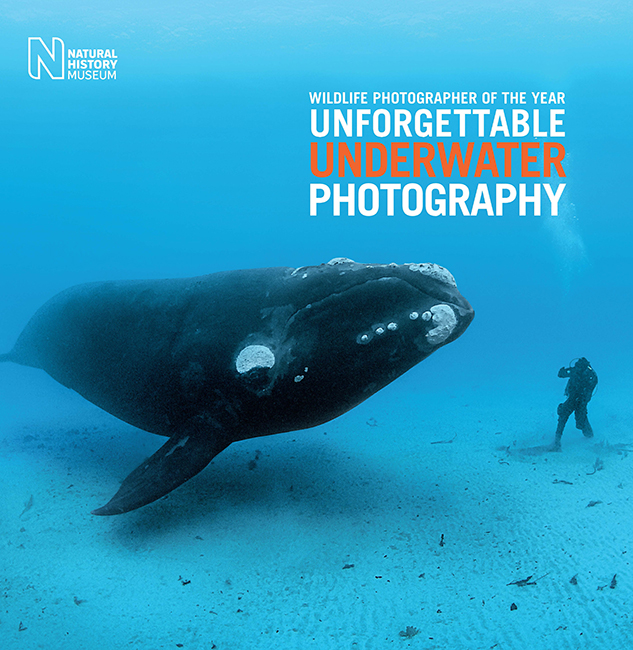Unforgettable Underwater Photography