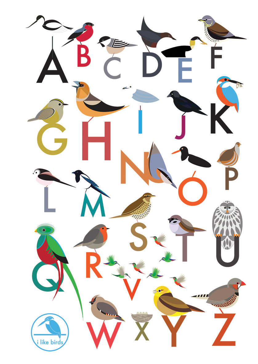 I Like Birds: An Alphabet of Birds Address Book