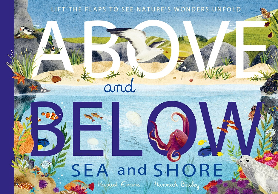 Above and Below: Sea and Shore